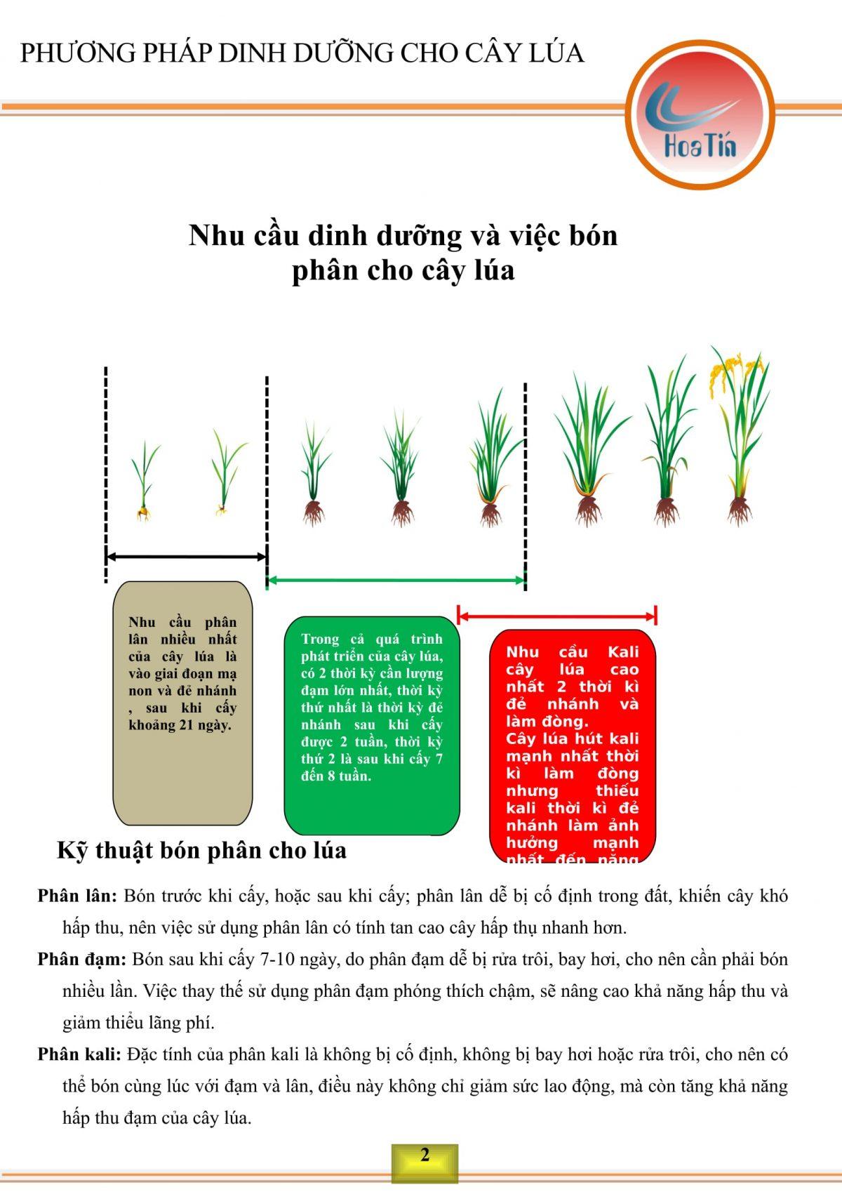Xác định nhu cầu dinh dưỡng cho cây lúa